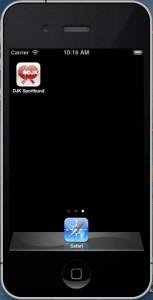 DJK Homepage auf Smartphone 4