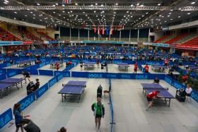 Linz 2015-04 (18) Tips Arena